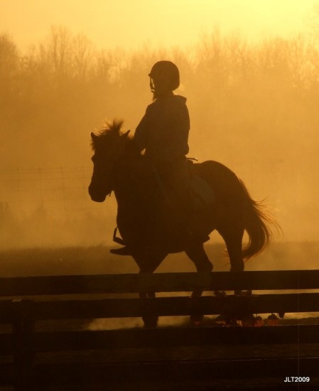 sunset and dust and ponies