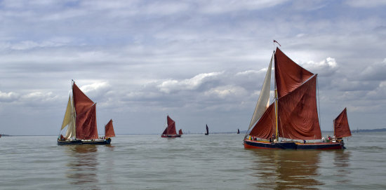 Thames Barge Race sailing