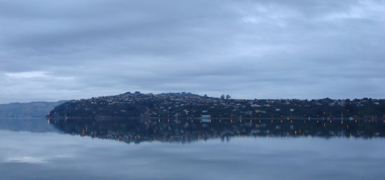 dawn otago harbour 2008 dunedin littleollie