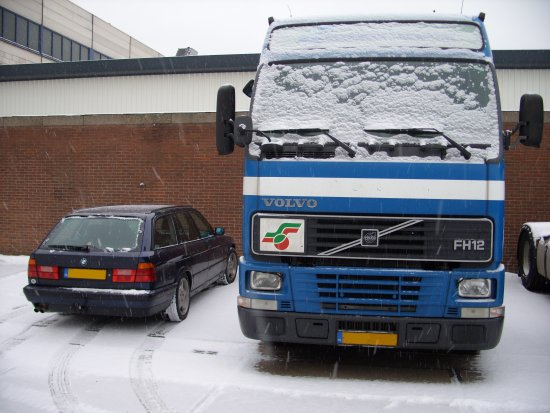 It Never Snows In Suptropical Rotterdam