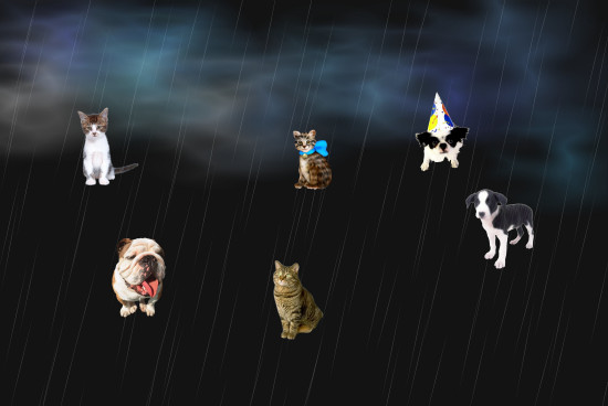 weather report old phrase its raining cats and dogs