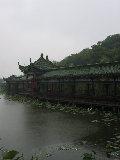 Zhejiang Xiaoshan China rain bridge pavillion lake waterlily