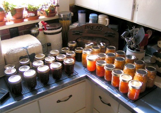 jam canning fruit berries peach