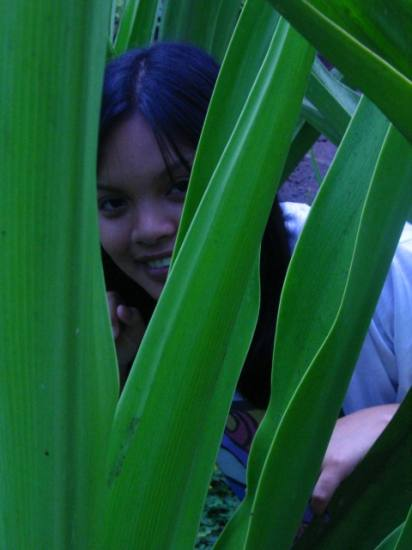 mary anne in the jungle