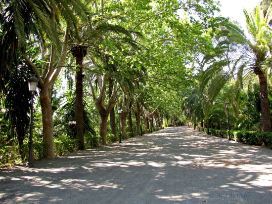 Jardin Botanico La_Conception Malaga Andalucia Spain home