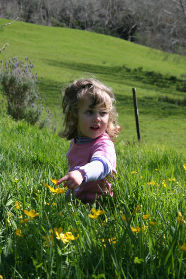 Lauren, sitting waist deep in Buttercups.  (Perhaps we should think about mowing the lawns!)