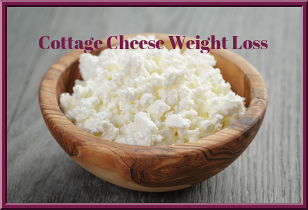 Cottage Cheese Weight Loss