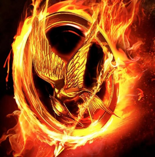 the hunger games mocking jay pearlr