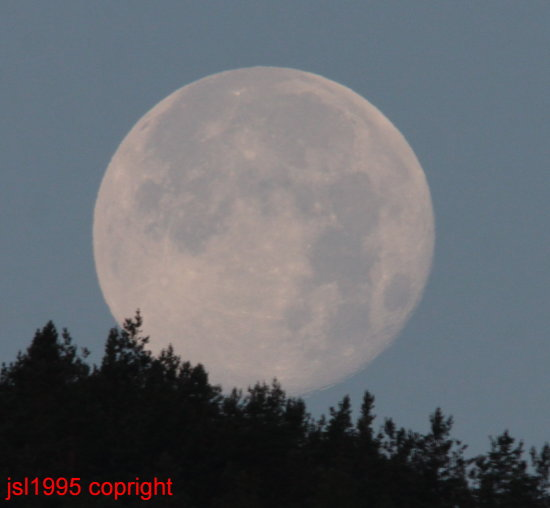 moon over fonab forest pitlochry scotland at 0520 am