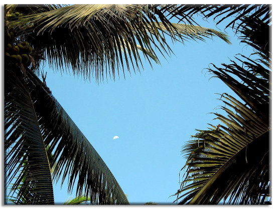 Mother Moon Peeking at Daylight....  Leyte Vacation.... Nov. 13, 2006... our schedule to go hi...