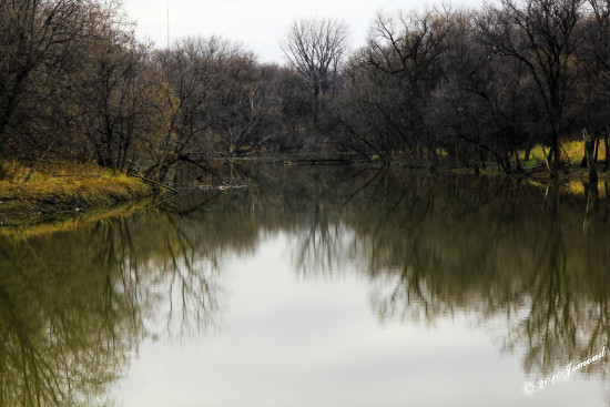 reflectionthursday seineriver winnipeg canada