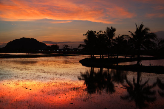 sunset thailand rice fields