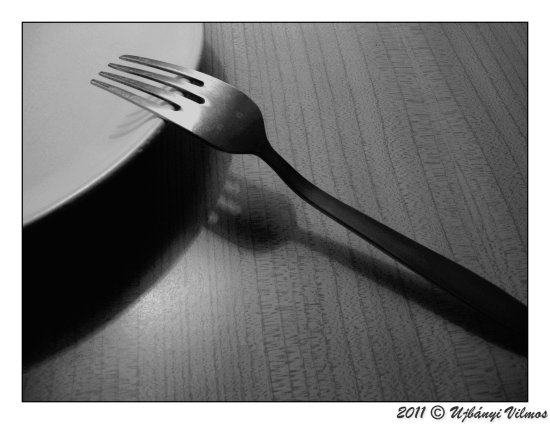 shadow light object fork plate table tribute retro artistic bw