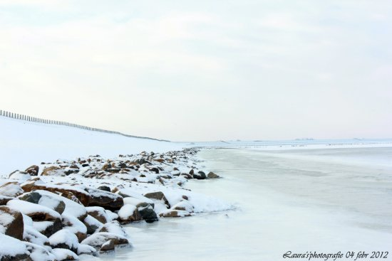 lauwersoog winter ice