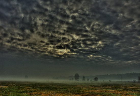foggy and stormy weather