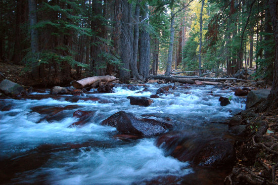 Mill Creek heading to Yosemite East side