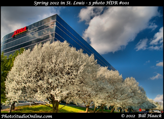 stlouis missouri usa spring color tree flowers vibrant hdr reflection 031812