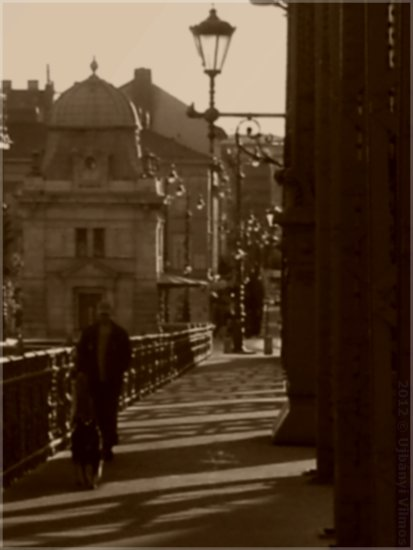 budapest bridge banisters road architecture shadows man dog lamp old