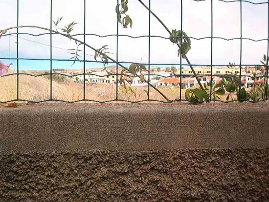 PortoSanto island Madeira Portugal 2007 holiday house dry flower sky view