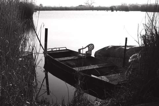 fishing lake BW nature peace