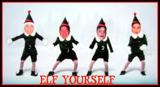 Elf family holiday fun christmas elfyourself cat cats