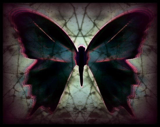 Gothic Butterfly EXIF