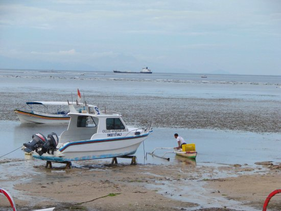 fishing shollows low tide bali indonesia littleollie
