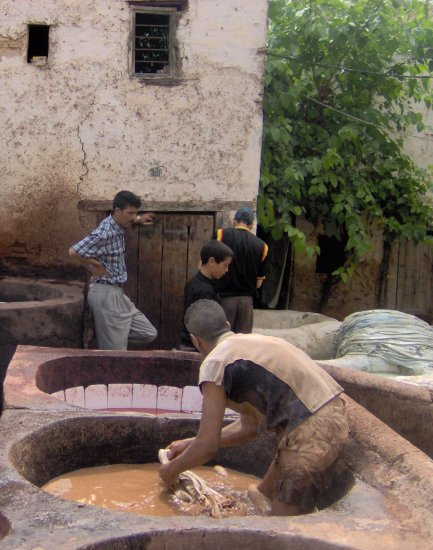 couleurs tanneries