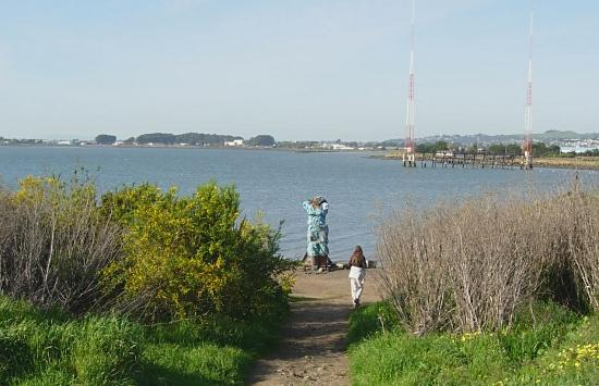 At the north end of the Albany Bulb, ein blaue Engel greets fhelsing.