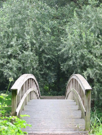 Hoorn Netherlands dwaalpark bridge trees