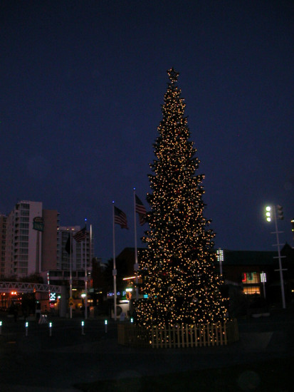 oakland holidayfph holiday tree lights jacklondonsquare jlsquarefph