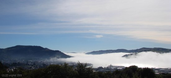 fog blanket harbour dunedin city littleollie