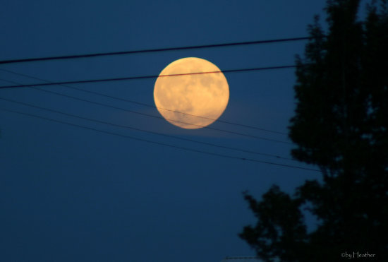for anyone unable to find your moon last night, it was stuck in the phone wires in Port Angeles!