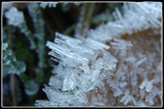 macro ice crystals