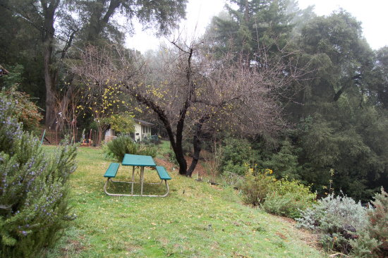 California Bonny Doon seasons winter