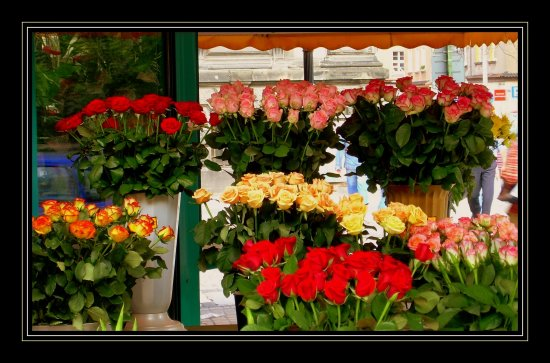 Something cheerful for all of You!  My mum has the name-day [existing in France too, not in Eng...