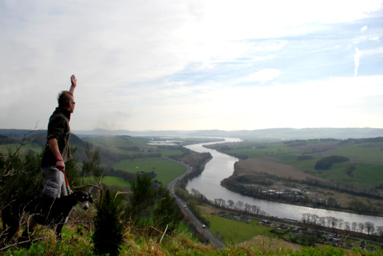 dog kes ashes perth kinnoull hill landscape
