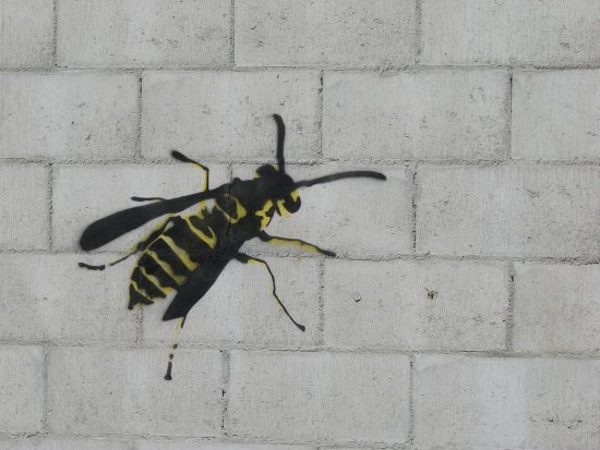 One of two stencil graffiti figurines that appear on a wall in Dunedin.