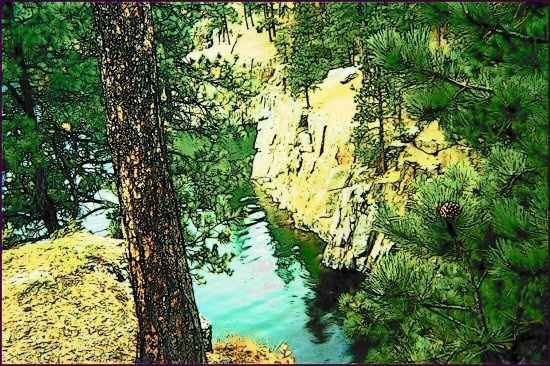 landscape forest lake blackhills southdakota