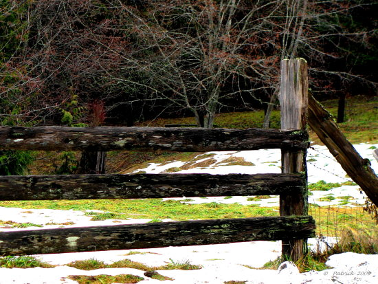 Fence winter Old