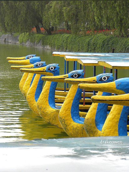 fake duck boating in Burnham Park Baguio City Philippines
