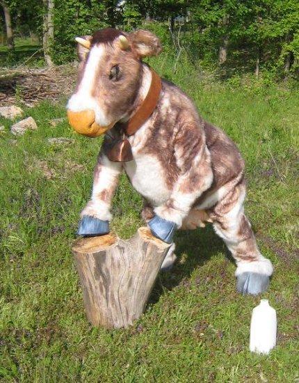 realistic cow costume performing cow
