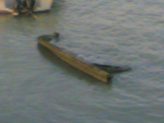 Boat going down