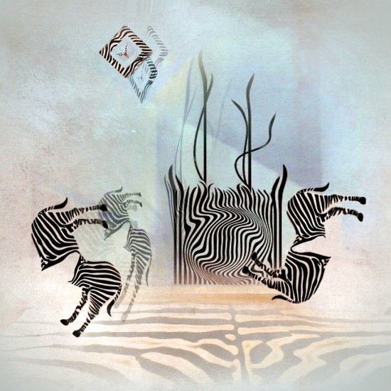 abstract surreal art room imagination zebra black white colour detail keitology