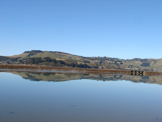 reflectionthursday archives sunrise Otago Harbour Dunedin NZ littleollie
