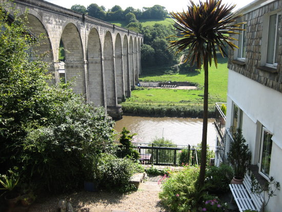 river bridge tree garden calstock