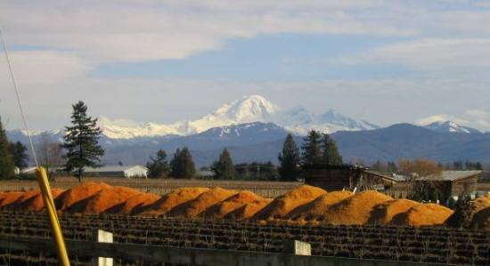 Mount Baker (USA) - from Abbotsford BC, Canada