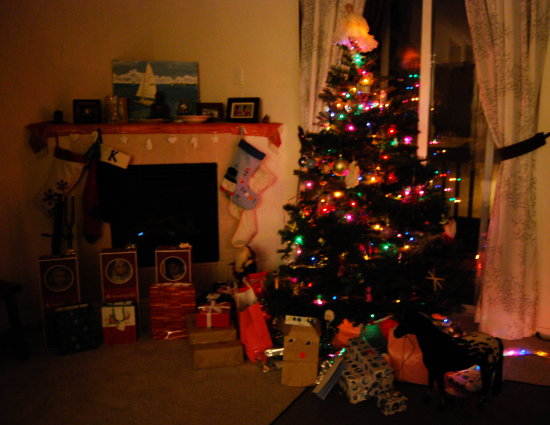 christmas morning before the kids attacked the presents...