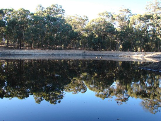backing up theme farm dam water reflection perth hills littleollie