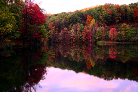 Fall autumn color foliage trees lake